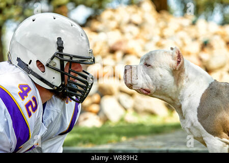 Face to face man and dog. An American football player in a helmet and uniform stands face to face with a fighting dog. Concept american football - Stock Photo