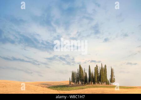 San Quirico, Tuscany, Italy, Europe
