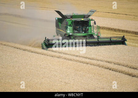 A combine harvester at work in a field of wheat near the village of Walpole Highway in Norfolk - Stock Photo
