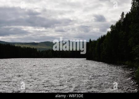 An den imposanten Stromschnellen Storforsen in Nordschweden. Sie gehören mit einer Fallhöhe von 60 Metern zu den größten Stromschnellen Skandinaviens. Stock Photo