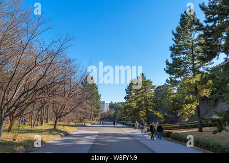 East Gardens of the Imperial Palace, Tokyo, Japan - Stock Photo