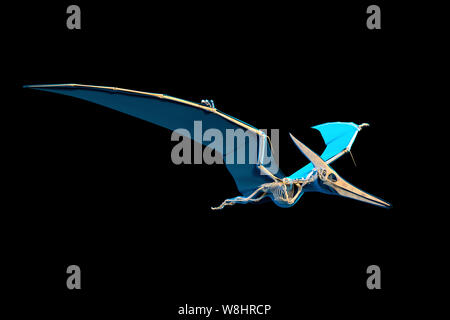 Pteranodon skeletal structure, illustration. These flying reptiles lived during the late cretaceous period, about 86-85 million years ago. - Stock Photo