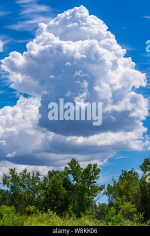 Afterrnoon thunderhead cloud forming in clear sky on hot summer day over Castle Rock Colorado US. Photo taken in July. - Stock Photo