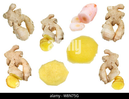 collage from fresh ginger roots and pickled galangal rhizome isolated on white background - Stock Photo