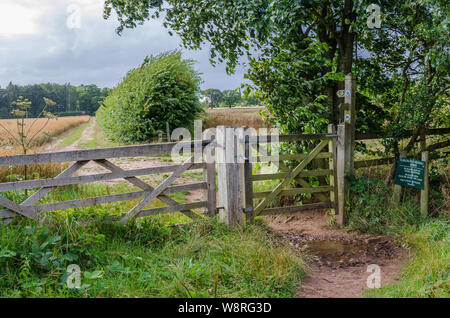A gate in a wooden fence in the South Staffordshire countryside near the village of Perton, UK - Stock Photo