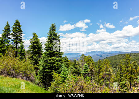 Carson National Forest green pine trees with Sangre de Cristo mountains on summer peak overlook from route 76 high road to Taos - Stock Photo
