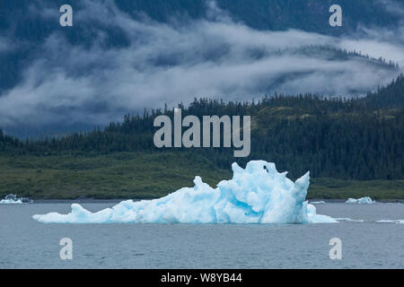 Iceberg of interesting shapes and fins floating in the ocean of the Prince William Sound. Behind the iceberg on rolling hills a low fog creeps over th - Stock Photo