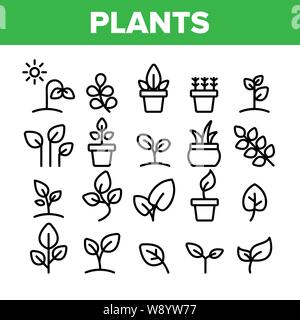 Collection Different Plants Sign Icons Set Vector - Stock Photo