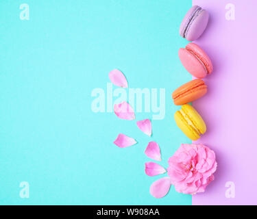 four multi-colored macarons with cream and a pink rose bud with scattered petals on a colored background, top view, flat lay - Stock Photo