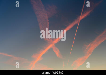 Contrails, early morning, Highgate, London, Britain. - Stock Photo