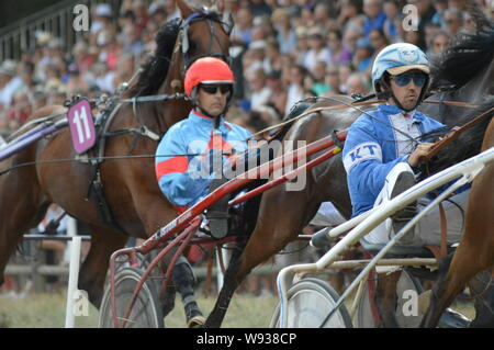 August. 11. 2019 Hippodrome a Sault ( South of France, The only horse race in the year ) - Stock Photo
