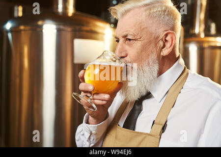 View from side of bearded man wearing white shirt and apron standing in brewery and tasting light beer. Male brewer keeping glass of delicious golden ale and drinking alcohol. Concept of beverage. - Stock Photo
