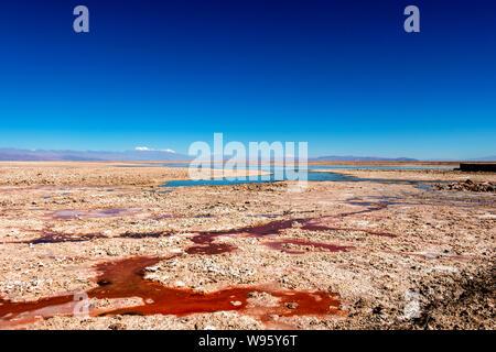 Chaxa Lake (Laguna Chaxa) with reflection of surroundings and blue sky in Salar of Atacama, Chile - Stock Photo