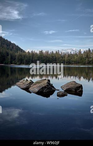 Beautiful and serene lake Feldsee at Feldberg in the Black Forest, Germany - Stock Photo