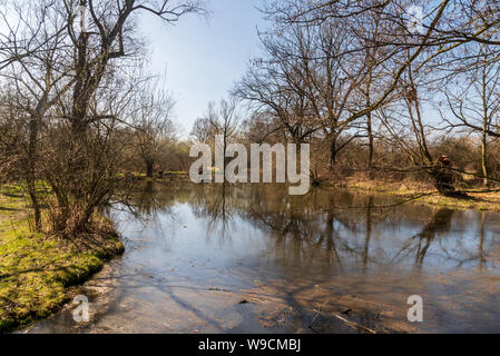 Slanaky river lake with trees around and clear sky in early spring CHKO Poodri protected area near Studenka town in Czech republic - Stock Photo
