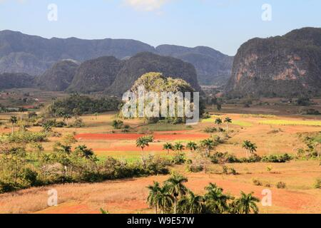 Cuba landscape - mogotes karstic rocks in Vinales National Park. UNESCO World Heritage Site. - Stock Photo
