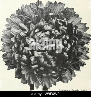 Archive image from page 15 of Currie's garden annual  spring. Currie's garden annual : spring 1934 59th year  curriesgardenann19curr_0 Year: 1934 ( Single Giants of California SINGLE GIANTS OF CALIFORNIA White Pkt. 10c Light Blue Pkt. 10c Pink Pkt. 10c Carmine Pkt. 10c Lilac Pkt. 10c Mixed Pkt. 10c - Stock Photo