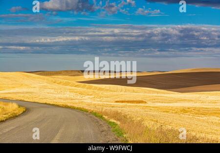 Washington, Palouse Region, fall season post harvest, Fairbanks Road, wheat fields - Stock Photo