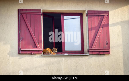 Limoges, France - September 28, 2017: A shuttered window, the window sash open and the red cat on the windowsill, home cosiness - Stock Photo