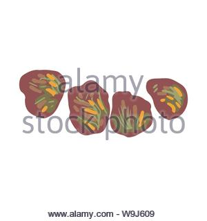 Dole Salad, red leaf lettuce isolated on white background. Flat Cartoon style. Vector illustration. - Stock Photo