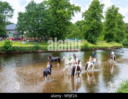 Appleby-in-Westmorland, Cumbria, England.  The Appleby Horse Fair, an annual gathering of Gypsies and Travellers and their horses. - Stock Photo