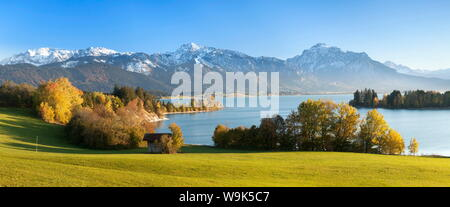 View over Lake Forggensee to the Alps, Allgau, Bavaria, Germay, Europe - Stock Photo