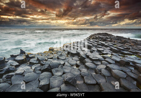 An evening view of the Giant's Causeway, UNESCO World Heritage Site, County Antrim, Ulster, Northern Ireland, United Kingdom, Europe - Stock Photo