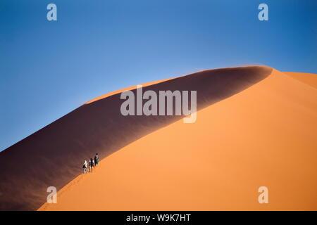 Tourists walking up the snaking ridge of Elim Dune against blue sky, Namib Desert near Sesriem, Namib Naukluft Park, Namibia, Africa - Stock Photo