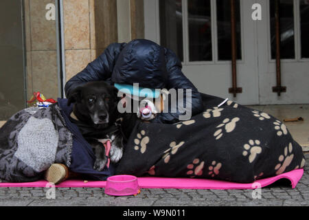 Lady tramp with two dogs in the streets of Berlin. one of the dogs has a baby pacifier, the other two-colored eyes Stock Photo