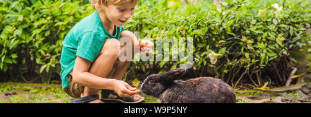 The boy feeds the rabbit. Cosmetics test on rabbit animal. Cruelty free and stop animal abuse concept BANNER, LONG FORMAT - Stock Photo