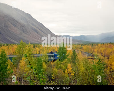 The passenger train travels through the forest. Railway through the forest - Stock Photo