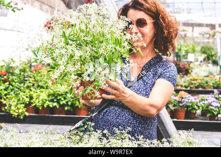 Woman looking beautiful flowers in a flower shop. Middle age caucasian female choose gift for friend from the crowded shelves of a greenhouse. Colorfu - Stock Photo