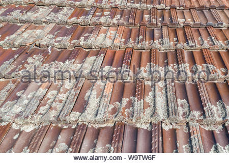 Terracotta tiles on an old roof - Stock Photo