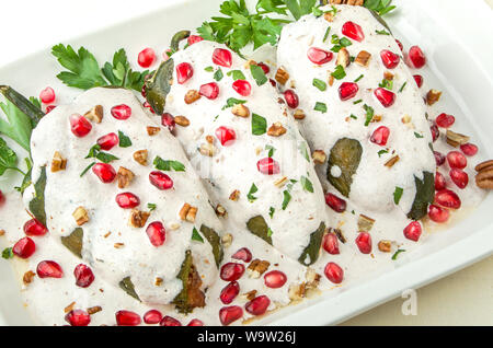 Chiles en nogada, a dish from Mexican cuisine - Stock Photo