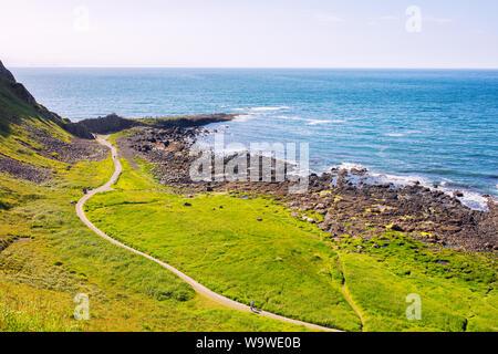 summer giants causeway coastline,Northern Ireland