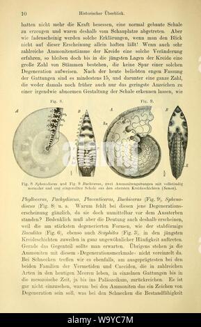 Die geologischen grundlagen der abstammungslehre (Page 10) - Stock Photo