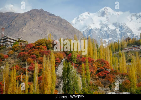 Nature landscape view of colorful foliage forest trees in autumn season and snow capped Ultar Sar mountain peak in Karakoram range in the background. - Stock Photo