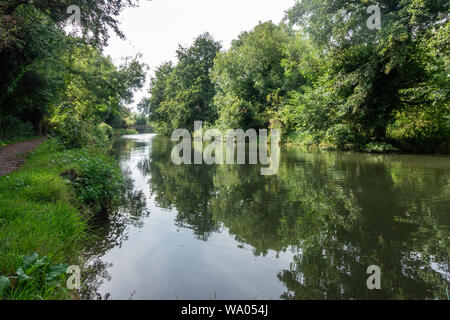 A view looking down The River Kennet at Reading, Berkshire - Stock Photo