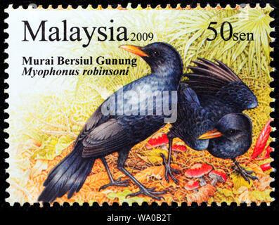 Malaysian Whistling Thrush, Myophonus robinsoni, postage stamp, Malaysia, 2009 - Stock Photo