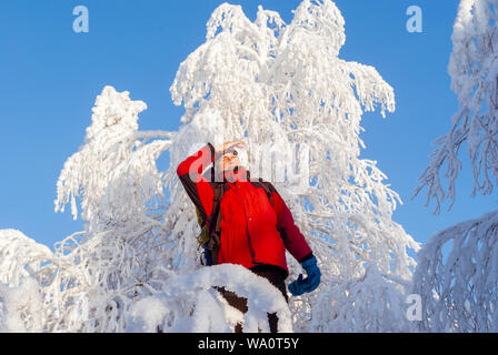 hiker man in winter sportswear looking into the distance, standing against frost-covered birch trees in a winter snow forest - Stock Photo