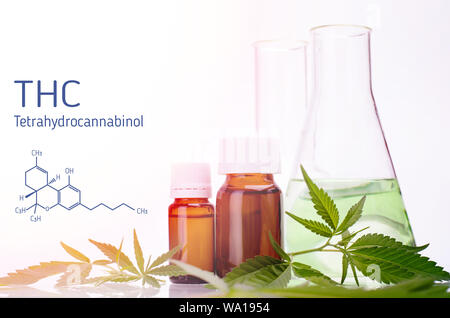 THC formula, Tetrahydrocannabinol. Medical, chemical theme background with cannabis leaves, oil bottle and laboratory glass flasks behind on a white b - Stock Photo