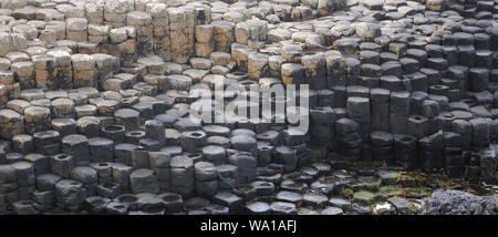 Polygonal basalt columns of the Giant's Causeway. Bushmills, County Antrim, Northern Ireland, UK. - Stock Photo