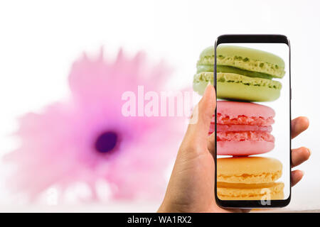 hand holding phone and taking photo of tasty colorful macarons in plate on trendy pastel with blurred pink flower, space for text. modern food photogr