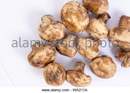 Grilled mushrooms served on the plate. Vegetarian concept with vegetables - Stock Photo