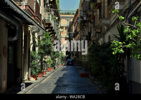 Typical Italian street in Catania. Narrow paved road with little trees and colorful buildings with small balconies on both sides - Stock Photo