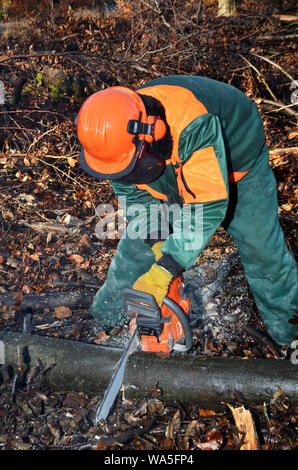 lumberjach mit protection clothing during work in the forest - Stock Photo