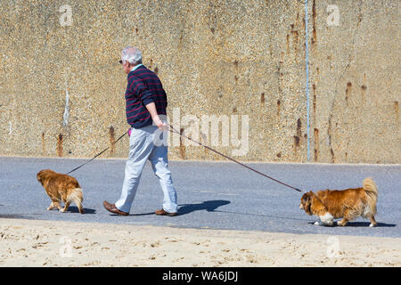 Poole, UK. 18th Aug 2019. UK weather: after a wet start, the sun returns and a lovely warm sunny day as beachgoers head to the seaside at Poole beaches to enjoy the sunshine. Who's taking who for a walk? Man and dogs walking along promenade. Credit: Carolyn Jenkins/Alamy Live News - Stock Photo