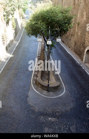 Low view of trees in the middle of the Via Luigi de Maio. A hairpin bend leading to Marina Piccola, Sorrento, Italy