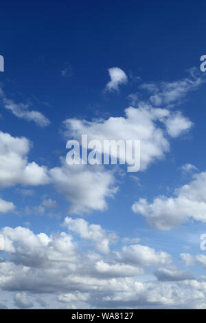 White, cumulus, cloud, clouds, blue sky, portrait shape, vertical - Stock Photo