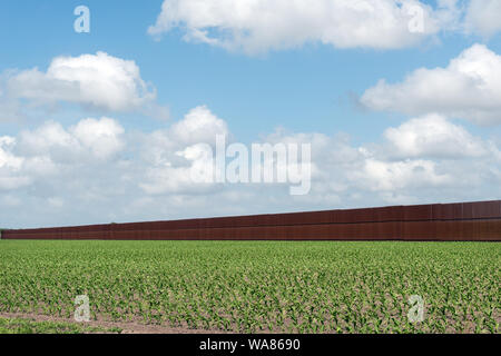 By design there is a gap in the United States-Mexican border-security fence. It allows U.S. travelers to visit the Rabb Plantation, part of the Sabal Palm Sanctuary along the Rio Grande, Brownsville, Texas - Stock Photo
